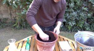 agujero para plantar